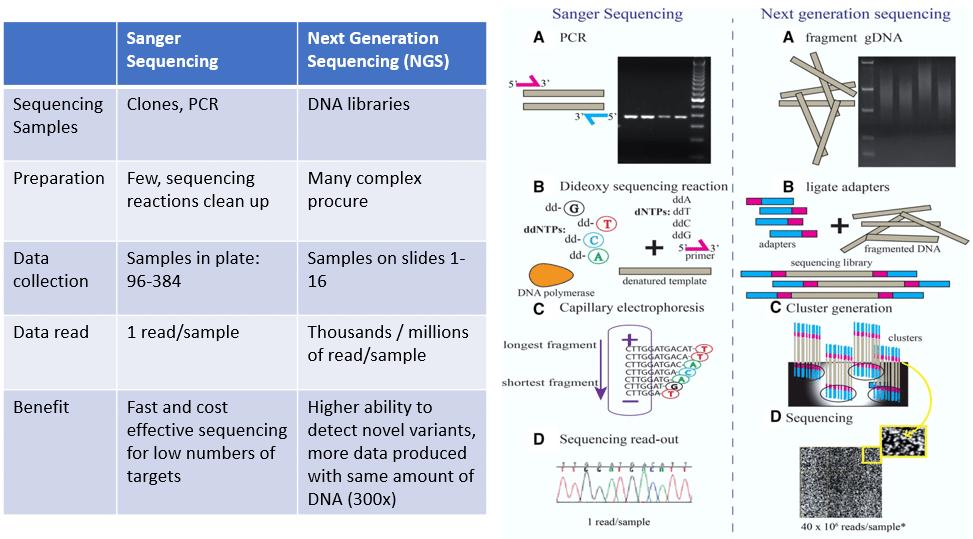 Comprehensive Cancer Genomics Profiling3