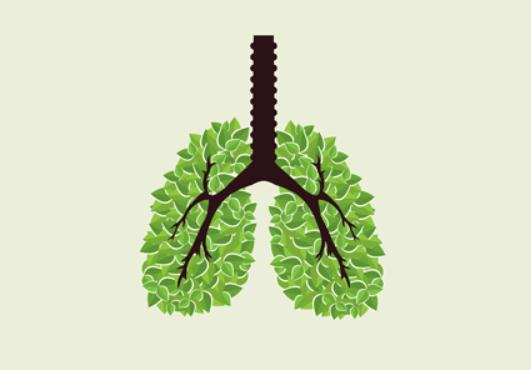 傳統治療合免疫治療 肺癌患者治療新契機